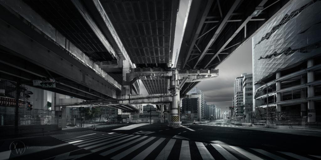 The hidden Troy-一ノ橋ジャンクション/東京-